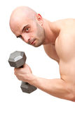 Muscular body builder man Royalty Free Stock Photos