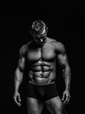 Muscular body Stock Photography