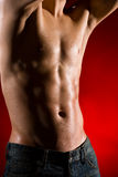 Muscular body of young man Royalty Free Stock Photography