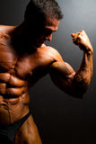 Muscular bodybuilder Stock Image