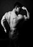 Muscular bodybuilder Stock Photos