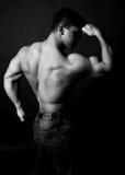 Muscular bodybuilder. Half body side portrait of muscular bodybuilder posing with black background Stock Photos