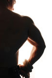 Muscular bodybuilder. Rear view of muscular bodybuilder with rope around wrist, white background Stock Photos