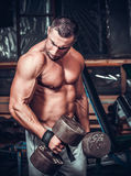 Muscular bodybuilder doing exercises with dumbbells Royalty Free Stock Images