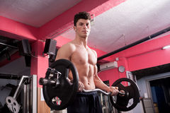 Muscular bodybuilder exercising in the gym Stock Photography