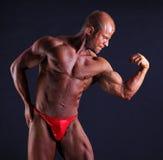 Muscular bodybuilder flexing biceps Stock Image