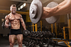 Muscular bodybuilder guy doing exercises with dumbbell Royalty Free Stock Photos