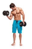 Muscular bodybuilder guy doing exercises with dumbbells. Isolated over white background royalty free stock photo