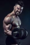 Muscular bodybuilder guy doing exercises with dumbbells stock image