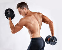 Muscular bodybuilder guy doing exercises with dumbbells over grey background with copyspace Stock Image