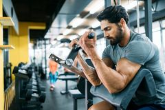 Muscular bodybuilder guy doing exercises. With dumbbells in gym Royalty Free Stock Image