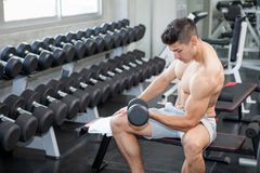 Free Muscular Bodybuilder Guy Doing Exercises Sitting With Weight Lifting Dumbbells In Gym . Shirtless Sport Young Fitness Man Training Royalty Free Stock Images - 141524169