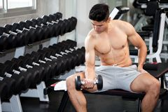 Free Muscular Bodybuilder Guy Doing Exercises Sitting With Weight Lifting Dumbbells In Gym . Shirtless Sport Young Fitness Man Training Stock Photography - 141524322