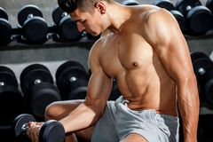 Free Muscular Bodybuilder Guy Doing Exercises Sitting With Weight Lifting Dumbbells In Gym . Shirtless Sport Young Fitness Man Training Royalty Free Stock Images - 141524349