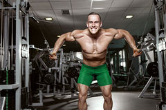 Muscular bodybuilder guy doing exercises workout in gym royalty free stock photo