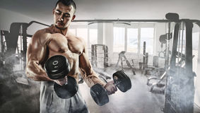 Muscular bodybuilder in the gym training with dumbbells Stock Photo