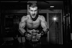 Muscular bodybuilder handsome men doing exercises in gym with naked torso. Strong athletic guy with abdominal muscles and biceps. Muscular bodybuilder handsome Stock Photos