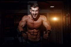 Muscular bodybuilder handsome men doing exercises in gym with naked torso. Strong athletic guy with abdominal muscles and biceps. Muscular bodybuilder handsome Royalty Free Stock Photos