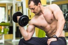 Muscular bodybuilder man training Royalty Free Stock Image