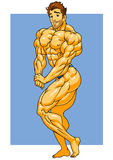 Muscular bodybuilder posing. Illustration,color,logo,isolated on a white Royalty Free Stock Image