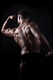 Muscular bodybuilder Royalty Free Stock Photo