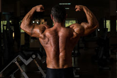 Muscular bodybuilder showing his back double biceps Stock Photos