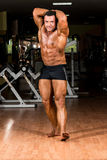 Muscular bodybuilder showing his front abdominal abs. Muscular body builder showing his front abdominal abs Stock Photo