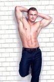 Muscular bodybuilder in studio. Royalty Free Stock Images