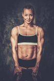 Muscular bodybuilder woman Stock Photography