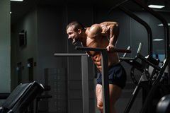 Muscular bodybuilder working out in gym doing exercises on paral Royalty Free Stock Photo