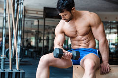 Muscular bodybuilder workout with dumbbel Stock Photos