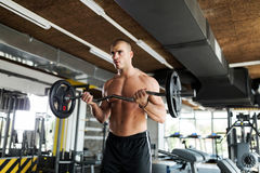 Muscular bodybuilder workout in gym doing biceps exercises. With bar Royalty Free Stock Photos