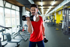 Muscular bodybuilder workout in gym doing biceps exercises. With dumbbells Stock Images