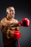 Muscular boxer Royalty Free Stock Images