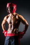 Muscular boxer. In dark studio Royalty Free Stock Image