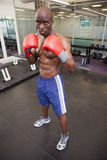 Muscular boxer in defensive stance in health club Royalty Free Stock Images