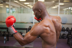 Muscular boxer in defensive stance in health club Stock Photos