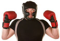 Muscular Boxer with Gloves Royalty Free Stock Image