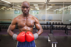 Muscular boxer in health club Royalty Free Stock Photography