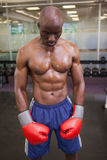 Muscular boxer in health club Royalty Free Stock Photo