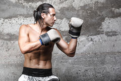 Muscular boxer man ready to punch. Side view of muscular boxer man ready to punch Royalty Free Stock Image
