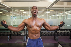 Muscular boxer shouting in health club Stock Photos