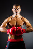 Muscular boxer in studio. Shooting Stock Images