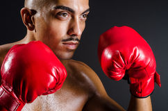Muscular boxer in studio. Shooting Royalty Free Stock Photography