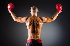 Muscular boxer in studio. Shooting Stock Image
