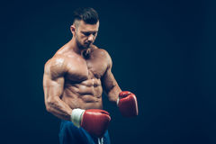 Muscular boxer in studio shooting, on black. Background Royalty Free Stock Photos