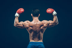 Muscular boxer in studio shooting, on black. Background Royalty Free Stock Photography