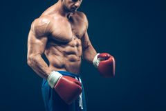 Muscular boxer in studio shooting, on black. Background Stock Photos
