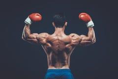 Muscular boxer in studio shooting, on black background. Muscular boxer in studio shooting, on black background fighter  kickbox boxer boxing fight Stock Image