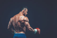 Muscular boxer in studio shooting, on black background. Muscular boxer in studio shooting, on black background fighter  kickbox boxer boxing fight Royalty Free Stock Images